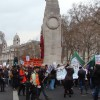 Protesters mount last ditch defense of NHS